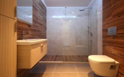 Modern Bathroom and Shower Cabin